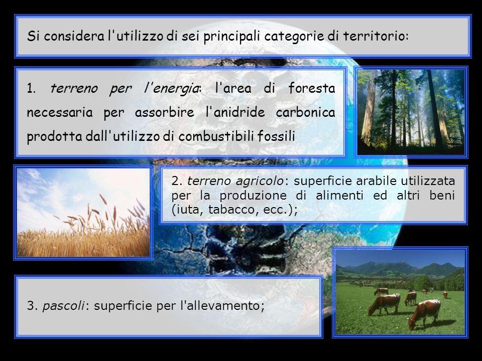Si considera l'utilizzo di sei principali categorie di territorio: 1. terreno per l'energia: l'area di foresta necessaria per assorbire l'anidride car