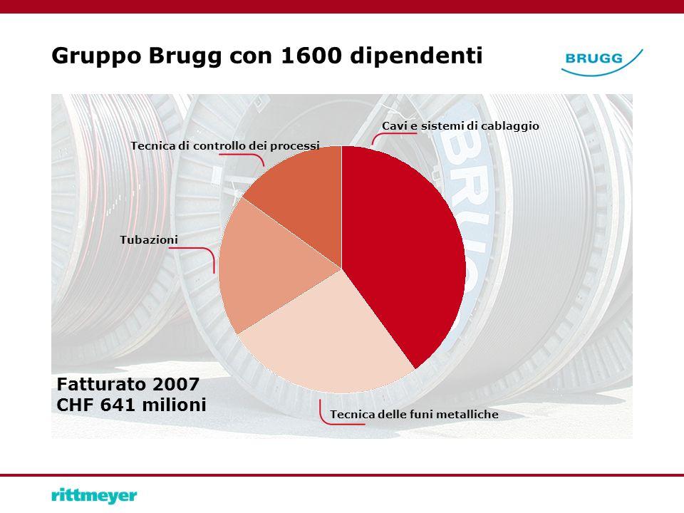 Gruppo Brugg con 1600 dipendenti Fatturato 2007 CHF 641 milioni Tubazioni Cavi e sistemi di cablaggio Tecnica di controllo dei processi Tecnica delle funi metalliche