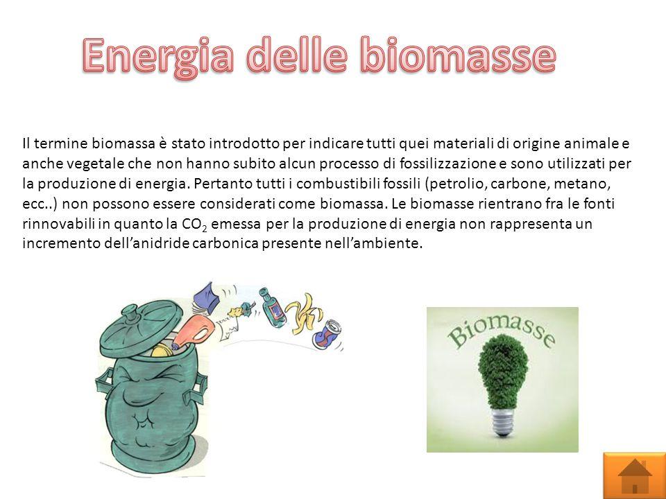 Il termine biomassa è stato introdotto per indicare tutti quei materiali di origine animale e anche vegetale che non hanno subito alcun processo di fossilizzazione e sono utilizzati per la produzione di energia.