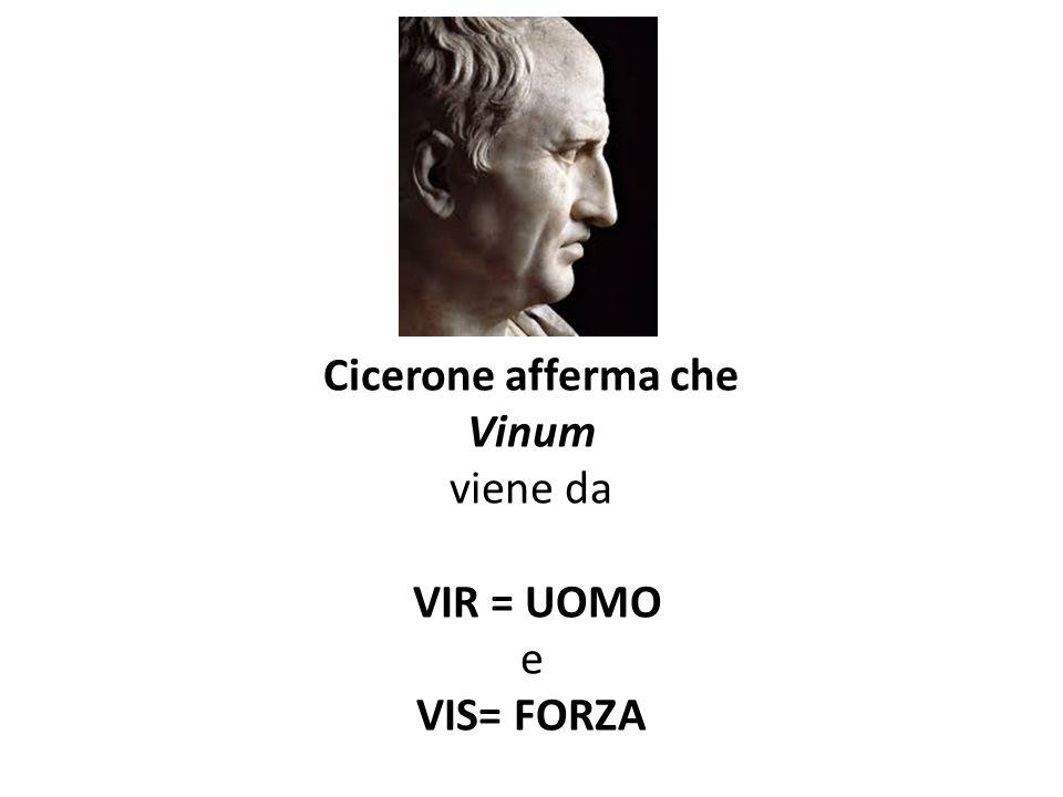 Cicerone afferma che Vinum viene da VIR = UOMO e VIS= FORZA