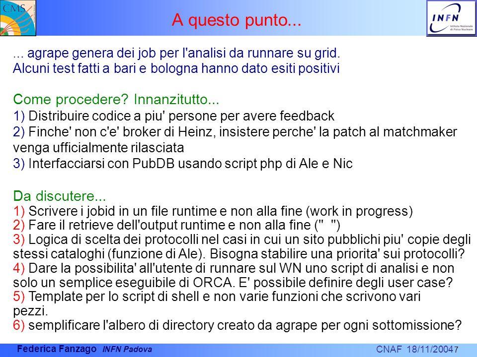 CNAF 18/11/2004 Federica Fanzago INFN Padova A questo punto...