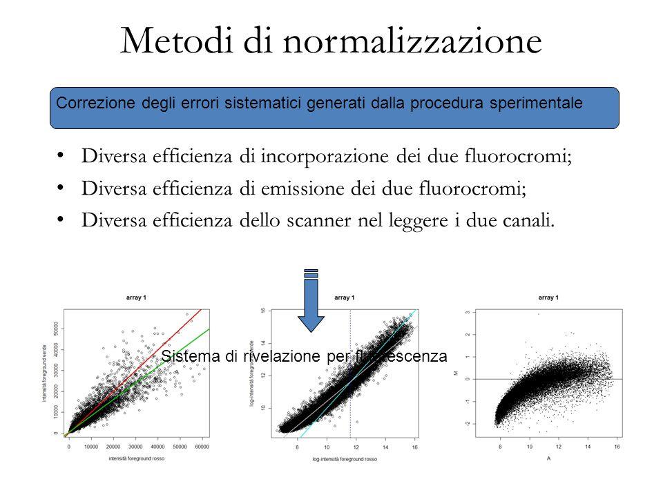 Metodi di normalizzazione Correzione degli errori sistematici generati dalla procedura sperimentale Diversa efficienza di incorporazione dei due fluor