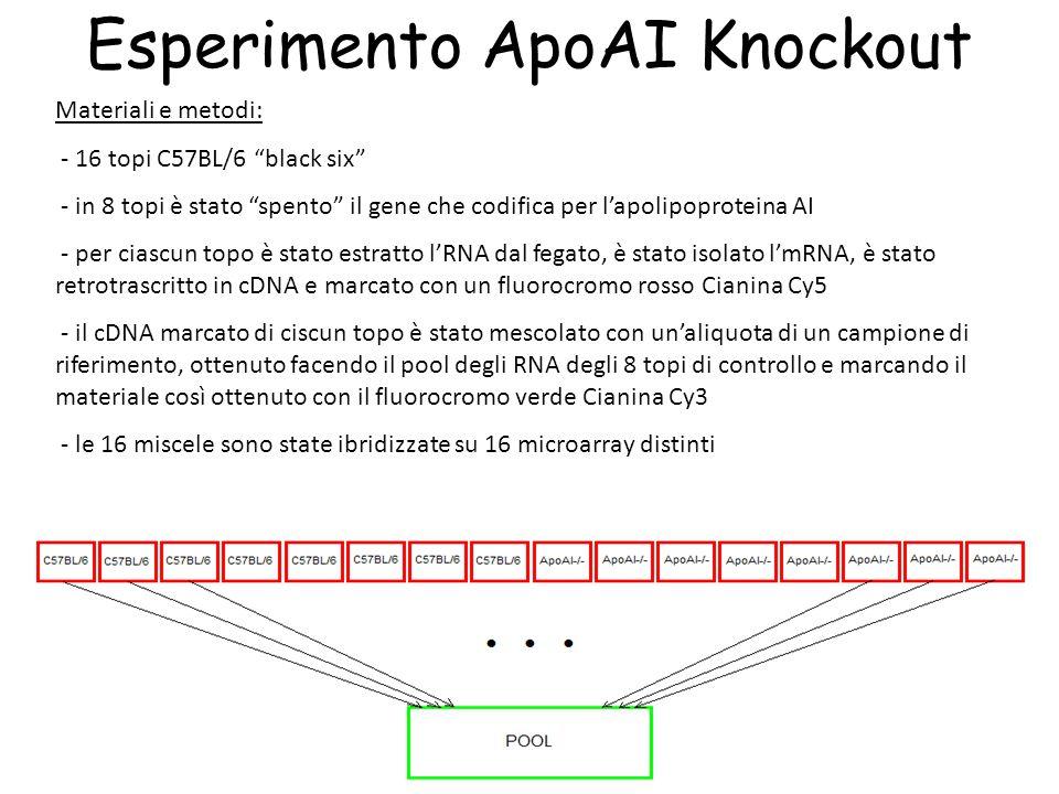 """26 Esperimento ApoAI Knockout Materiali e metodi: - 16 topi C57BL/6 """"black six"""" - in 8 topi è stato """"spento"""" il gene che codifica per l'apolipoprotein"""