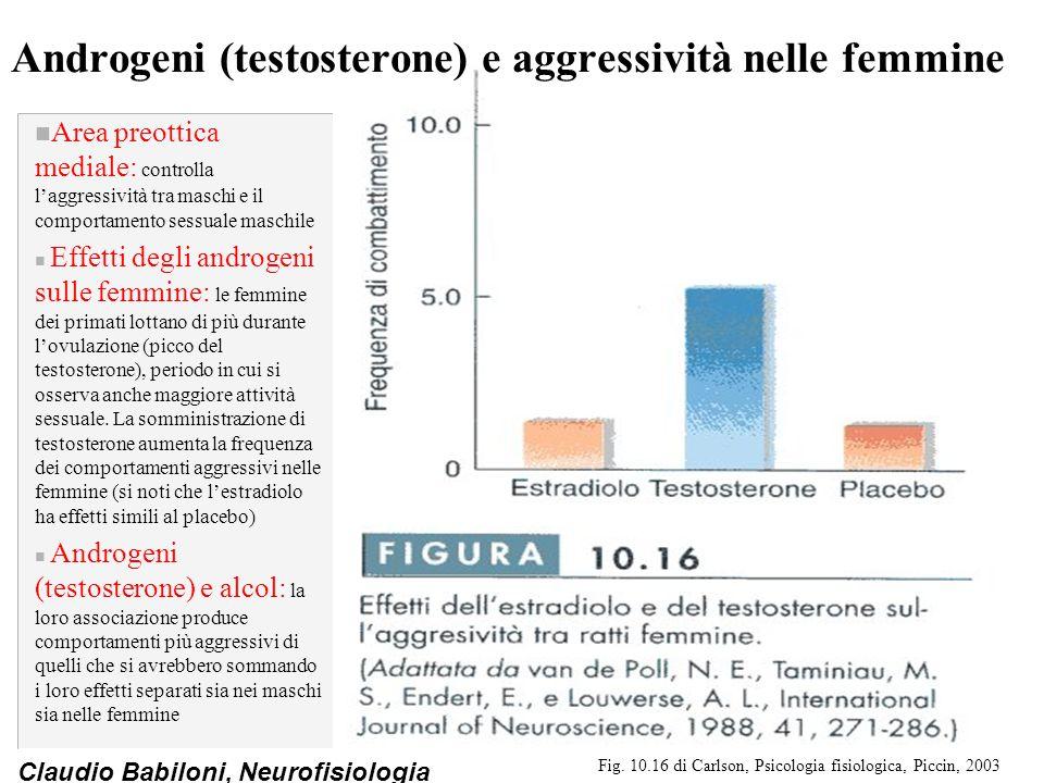 Claudio Babiloni, Neurofisiologia Androgeni (testosterone) e aggressività nelle femmine n Area preottica mediale: controlla l'aggressività tra maschi