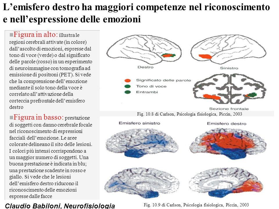 Claudio Babiloni, Neurofisiologia L'emisfero destro ha maggiori competenze nel riconoscimento e nell'espressione delle emozioni n Figura in alto: illu