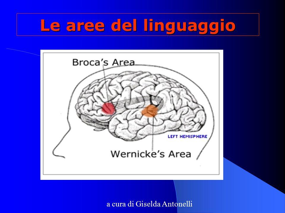Le aree del linguaggio a cura di Giselda Antonelli