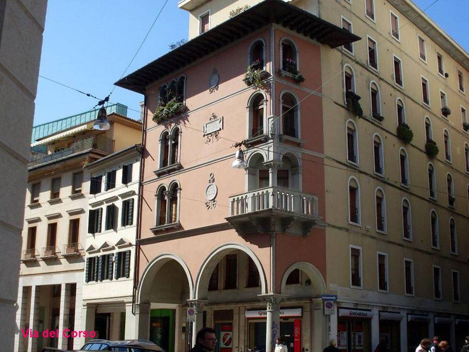 Treviso, comune di 83.167 abitanti (al 31.03.2011) capoluogo dell'omonima provincia sorge sulla media pianura veneta in una zona ricca di risorse idri