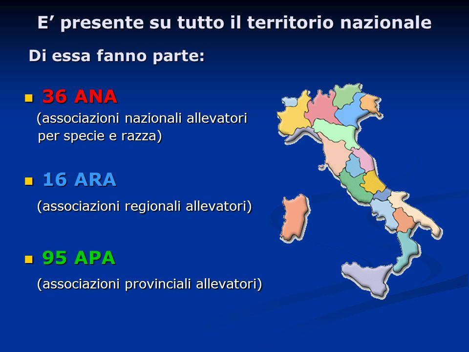 Progettualità AIA MIPAF AIA/ANA ARA/APA D.M.CCFF D.M.