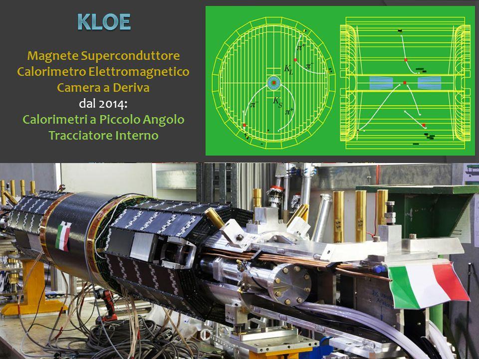 Magnete Superconduttore Calorimetro Elettromagnetico Camera a Deriva dal 2014: Calorimetri a Piccolo Angolo Tracciatore Interno