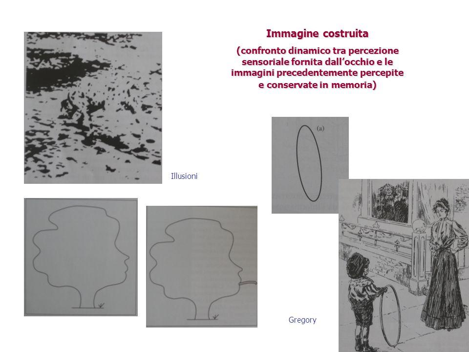 Immagine costruita (confronto dinamico tra percezione sensoriale fornita dall'occhio e le immagini precedentemente percepite e conservate in memoria)