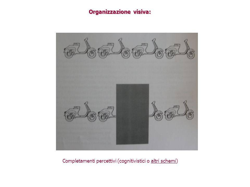 Organizzazione visiva: Completamenti percettivi (cognitivistici o altri schemi)