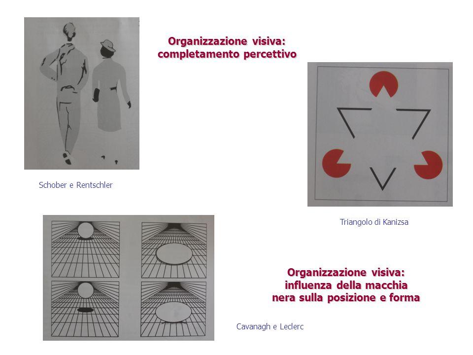 Organizzazione visiva: completamento percettivo Schober e Rentschler Triangolo di Kanizsa Organizzazione visiva: influenza della macchia nera sulla po
