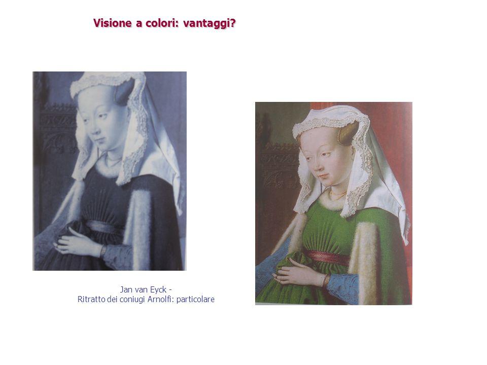 Visione a colori: vantaggi? Jan van Eyck - Ritratto dei coniugi Arnolfi: particolare