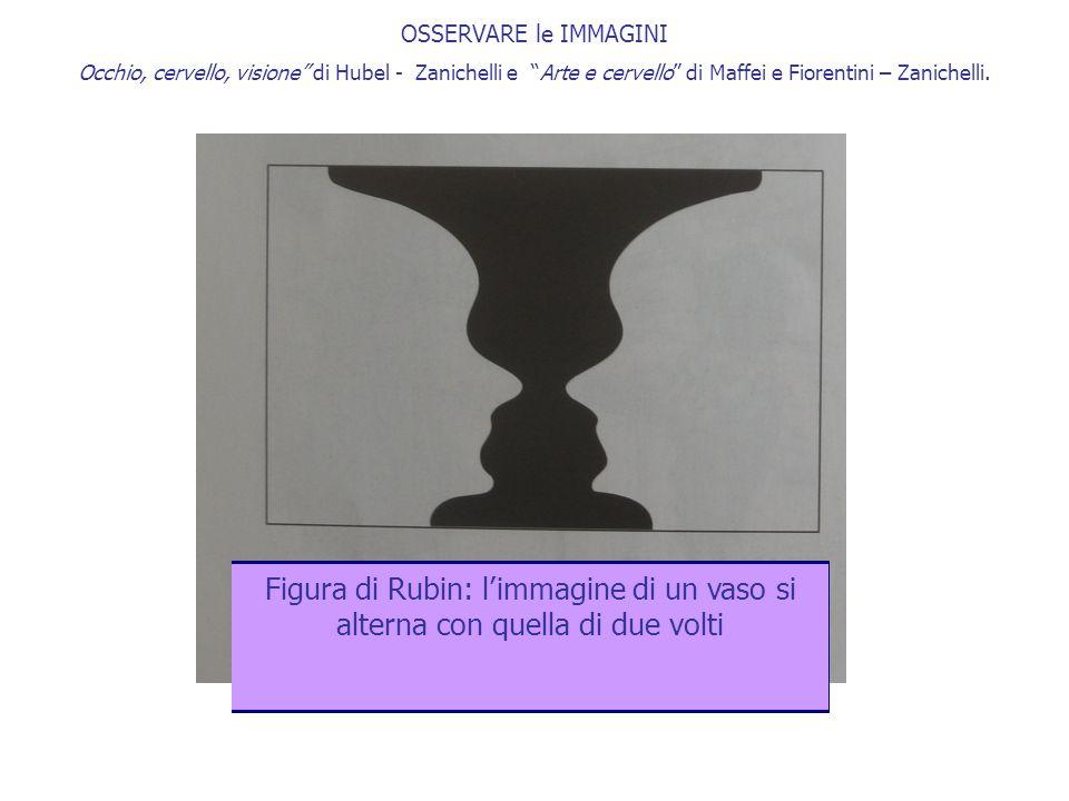 """OSSERVARE le IMMAGINI Occhio, cervello, visione"""" di Hubel - Zanichelli e """"Arte e cervello"""" di Maffei e Fiorentini – Zanichelli. ? Figura di Rubin: l'i"""