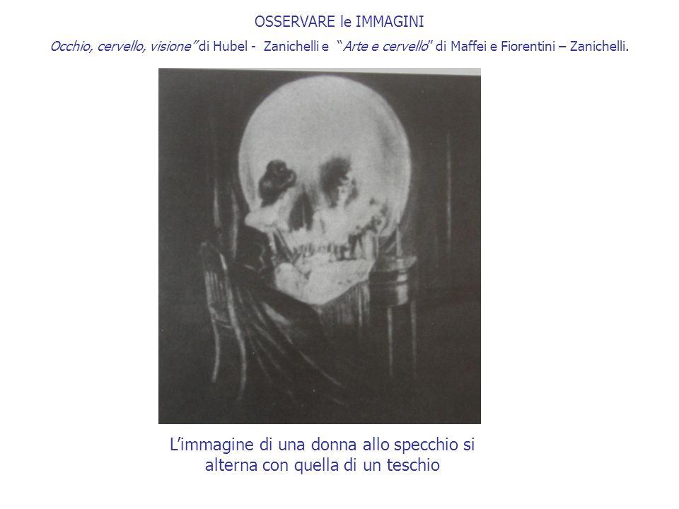 """OSSERVARE le IMMAGINI Occhio, cervello, visione"""" di Hubel - Zanichelli e """"Arte e cervello"""" di Maffei e Fiorentini – Zanichelli. L'immagine di una donn"""