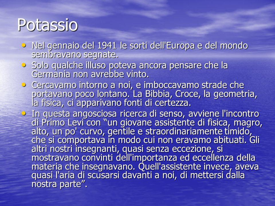 Potassio Nel gennaio del 1941 le sorti dell Europa e del mondo sembravano segnate.