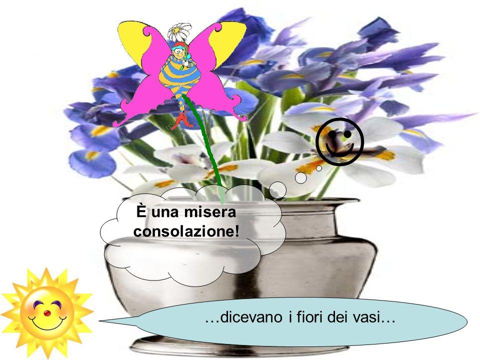 È una misera consolazione! …dicevano i fiori dei vasi…