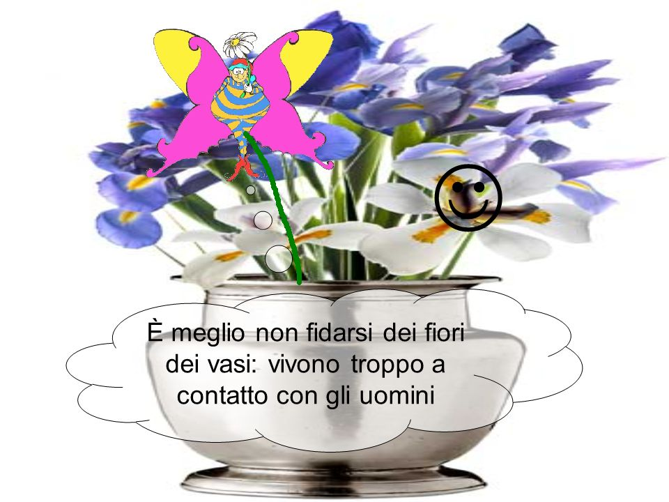 È meglio non fidarsi dei fiori dei vasi: vivono troppo a contatto con gli uomini