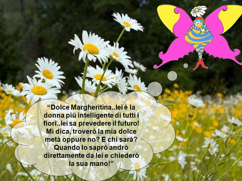 """""""Dolce Margheritina..lei è la donna più intelligente di tutti i fiori..lei sa prevedere il futuro! Mi dica, troverò la mia dolce metà oppure no? E chi"""