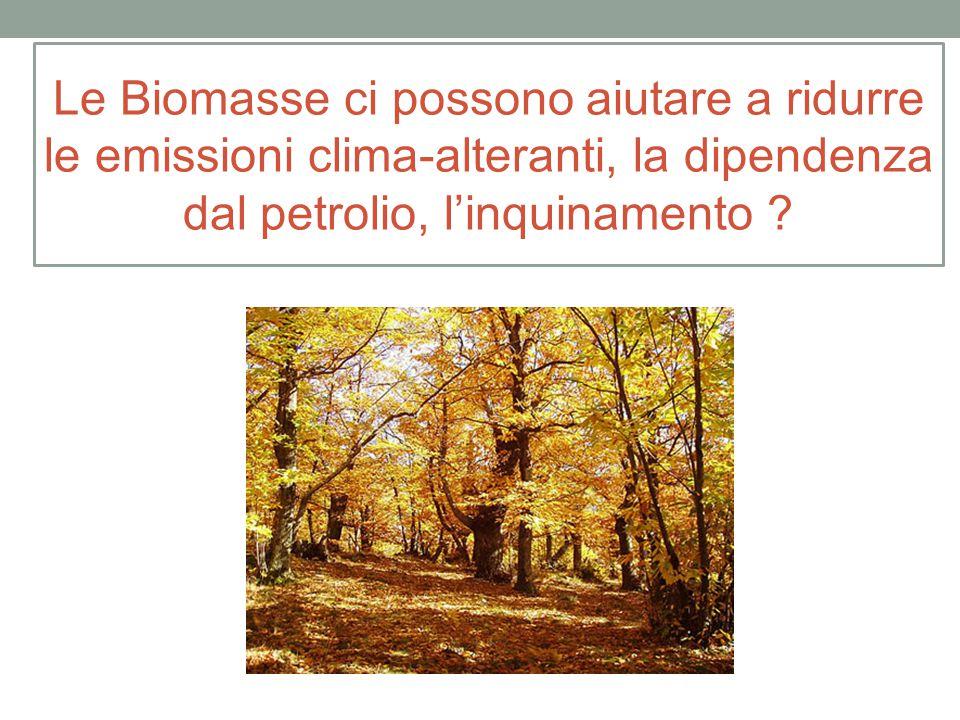 Le Biomasse ci possono aiutare a ridurre le emissioni clima-alteranti, la dipendenza dal petrolio, l'inquinamento ?