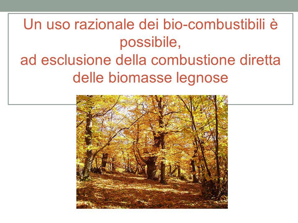 Un uso razionale dei bio-combustibili è possibile, ad esclusione della combustione diretta delle biomasse legnose