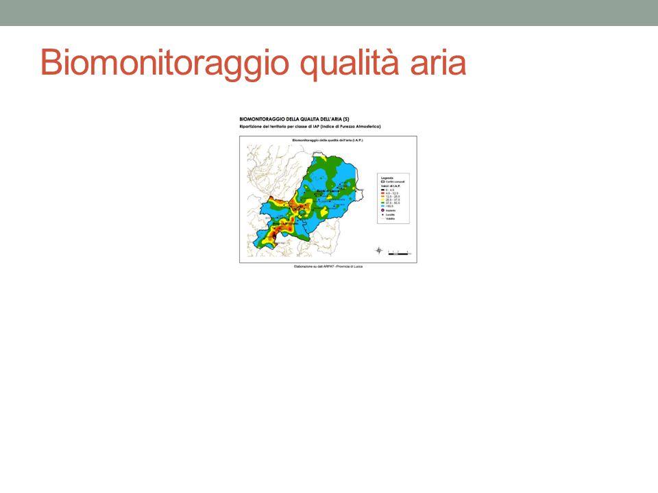 Biomonitoraggio qualità aria
