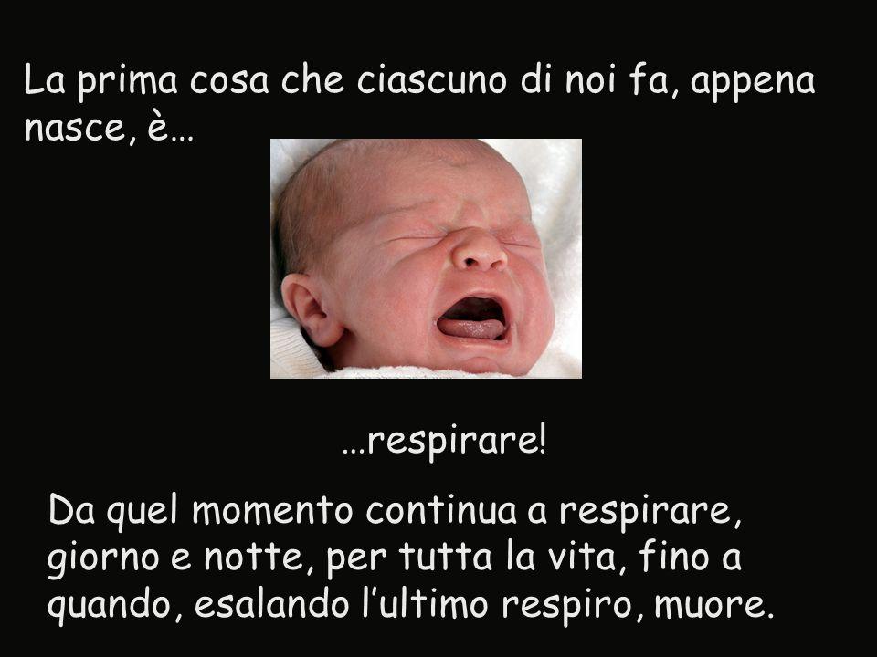 La prima cosa che ciascuno di noi fa, appena nasce, è… …respirare! Da quel momento continua a respirare, giorno e notte, per tutta la vita, fino a qua