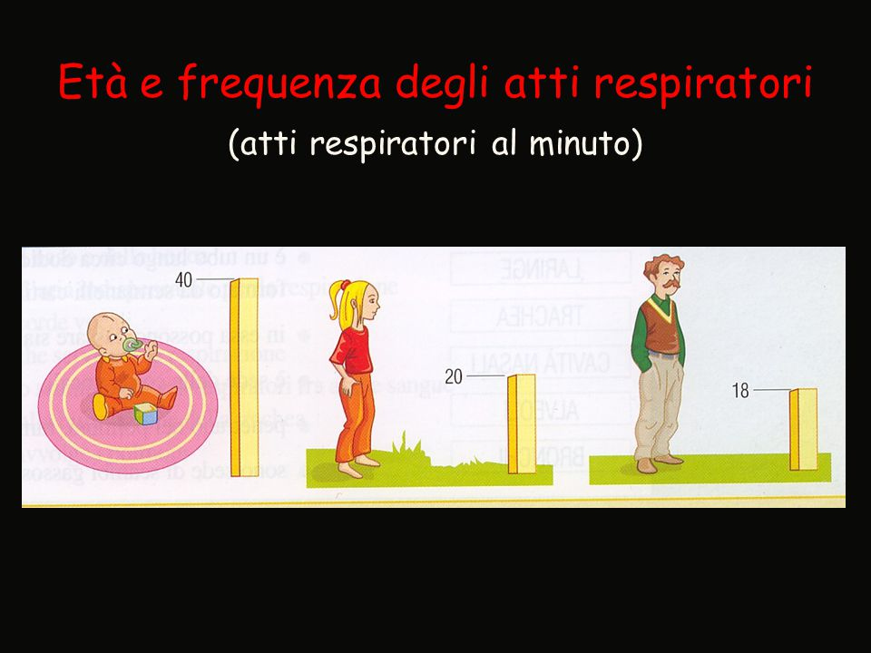 Età e frequenza degli atti respiratori (atti respiratori al minuto)