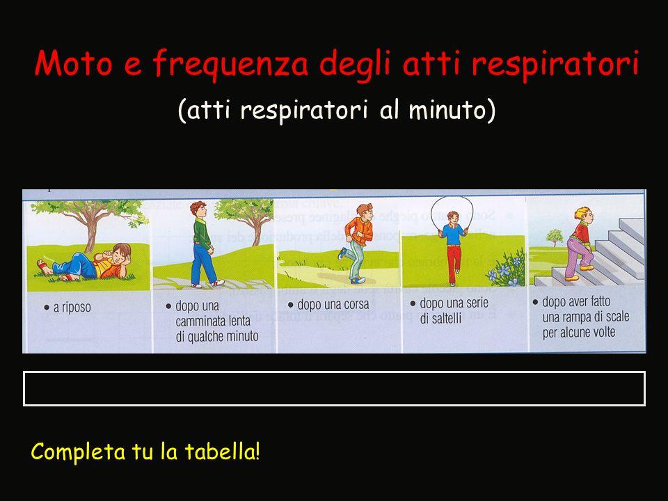 Moto e frequenza degli atti respiratori (atti respiratori al minuto) Completa tu la tabella!