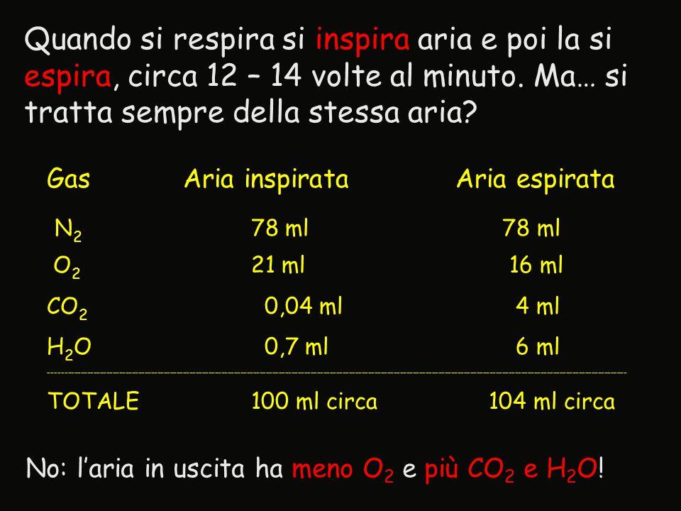 GasAria inspirataAria espirata N 2 78 ml 78 ml O 2 21 ml 16 ml CO 2 0,04 ml 4 ml H 2 O 0,7 ml 6 ml ---------------------------------------------------