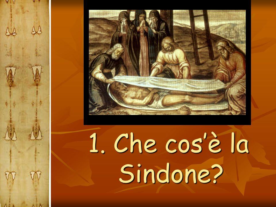  La Sindone di fatto non aggiunge nulla alla nostra fede, fondata sull'annuncio apostolico, ma, come diceva San Giovanni Paolo II :  Nella Sindone si riflette l'immagine della sofferenza umana, come l'icona della sofferenza dell'innocente di tutti i tempi.