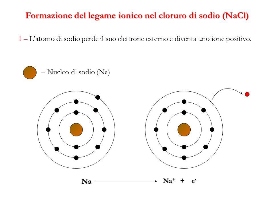Formazione del legame ionico nel cloruro di sodio (NaCl) 1 – L'atomo di sodio perde il suo elettrone esterno e diventa uno ione positivo. Na = Nucleo