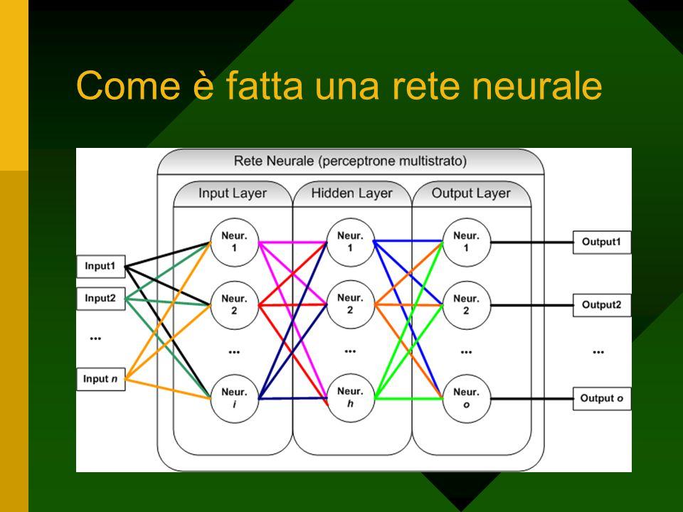 Come è fatta una rete neurale