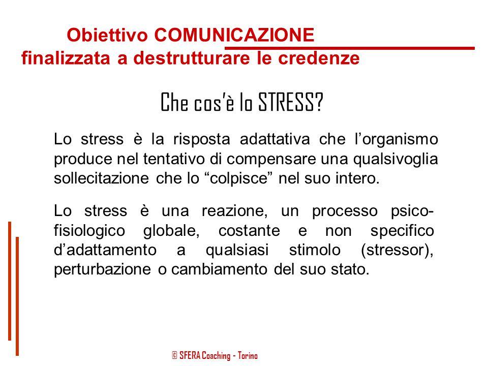 © SFERA Coaching - Torino Obiettivo COMUNICAZIONE La METAFORA CANONE COMUNICATIVO D'ECCELLENZA