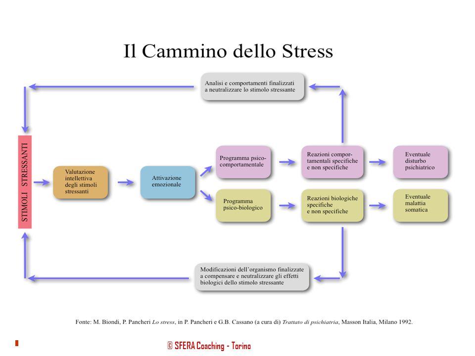 © SFERA Coaching - Torino Obiettivo COMUNICAZIONE finalizzata a destrutturare le credenze Che cos'è lo STRESS? Lo stress è la risposta adattativa che