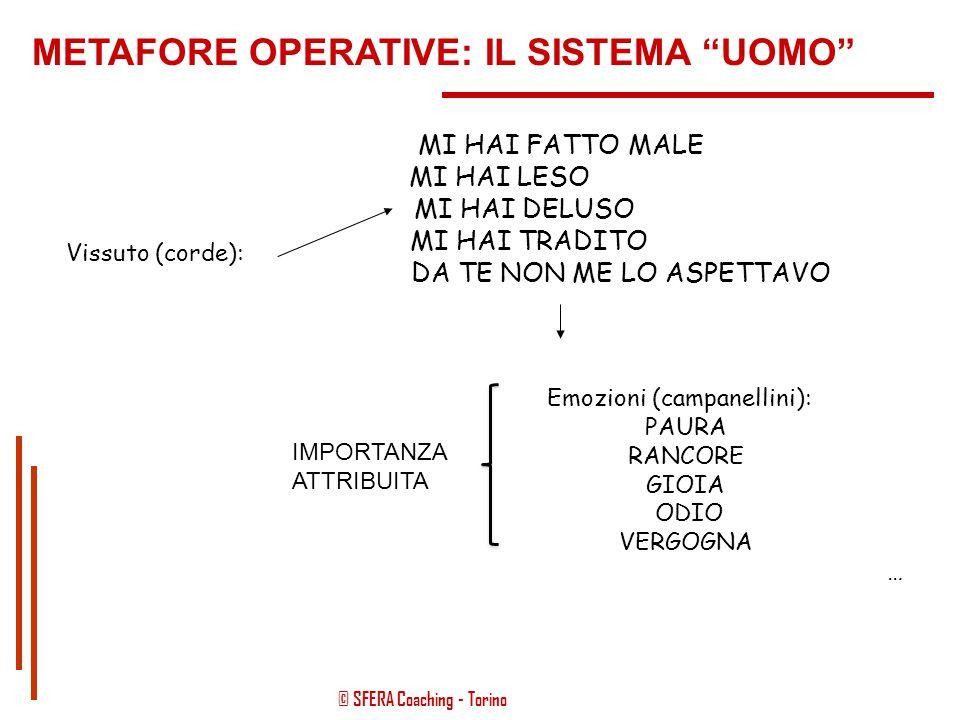 """© SFERA Coaching - Torino METAFORE OPERATIVE: IL SISTEMA """"UOMO"""" COS'È IMPORTANTE DI UNA """"SBERLA""""? IL GESTO? QUELLO CHE SIGNIFICA PER ME AVERLA RICEVUT"""