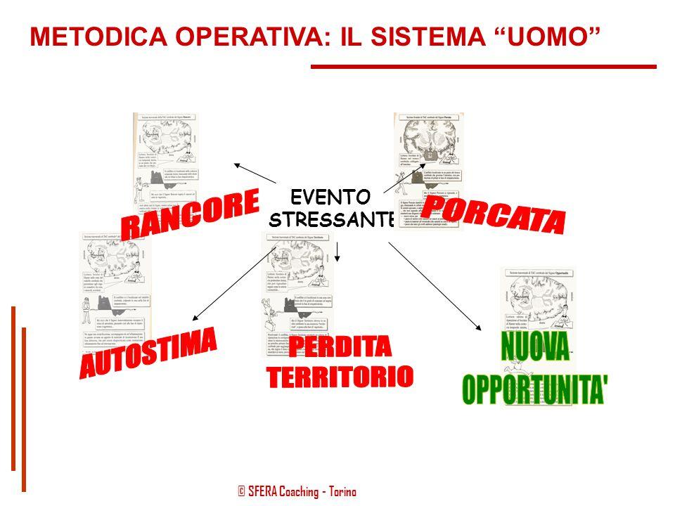 """© SFERA Coaching - Torino EVENTO STRESSANTE  TRAUMA  RISPOSTA EMOZIONALE METODICA OPERATIVA: IL SISTEMA """"UOMO"""""""