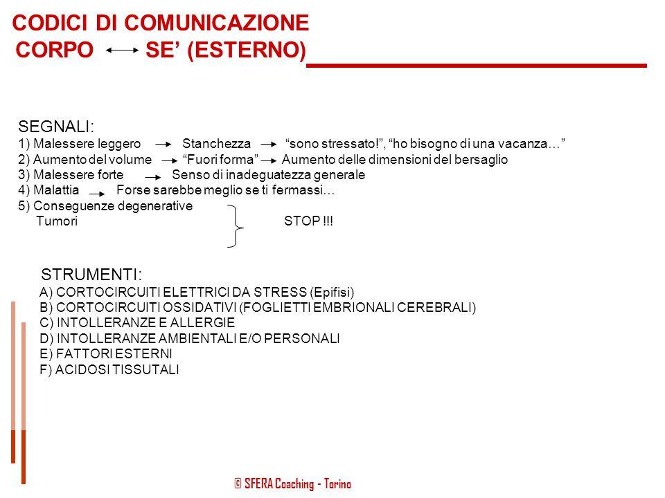© SFERA Coaching - Torino Autosvalutazione  Midollo Cerebrale  Organi Connettivi (ossa, muscoli, …) Rancore  Corteccia Temporale DX  Vie Biliari T
