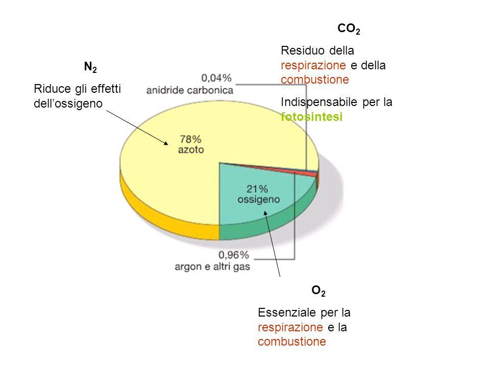 O 2 Essenziale per la respirazione e la combustione N 2 Riduce gli effetti dell'ossigeno CO 2 Residuo della respirazione e della combustione Indispensabile per la fotosintesi