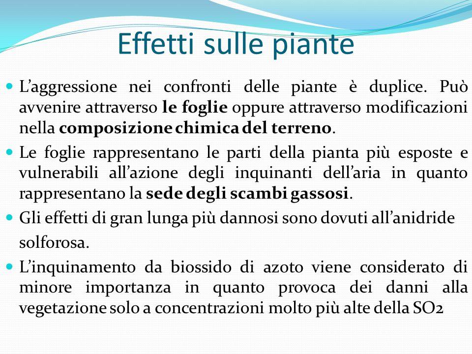 Effetti sulle piante L'aggressione nei confronti delle piante è duplice. Può avvenire attraverso le foglie oppure attraverso modificazioni nella compo