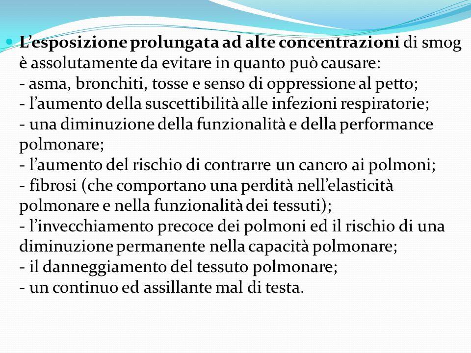 L'esposizione prolungata ad alte concentrazioni di smog è assolutamente da evitare in quanto può causare: - asma, bronchiti, tosse e senso di oppressi
