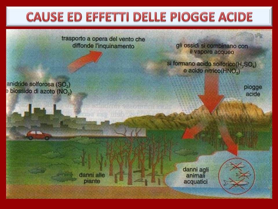 Effetti sull'ambiente Gli effetti ambientali dello smog fotochimico sono particolarmente evidenti sui vegetali.