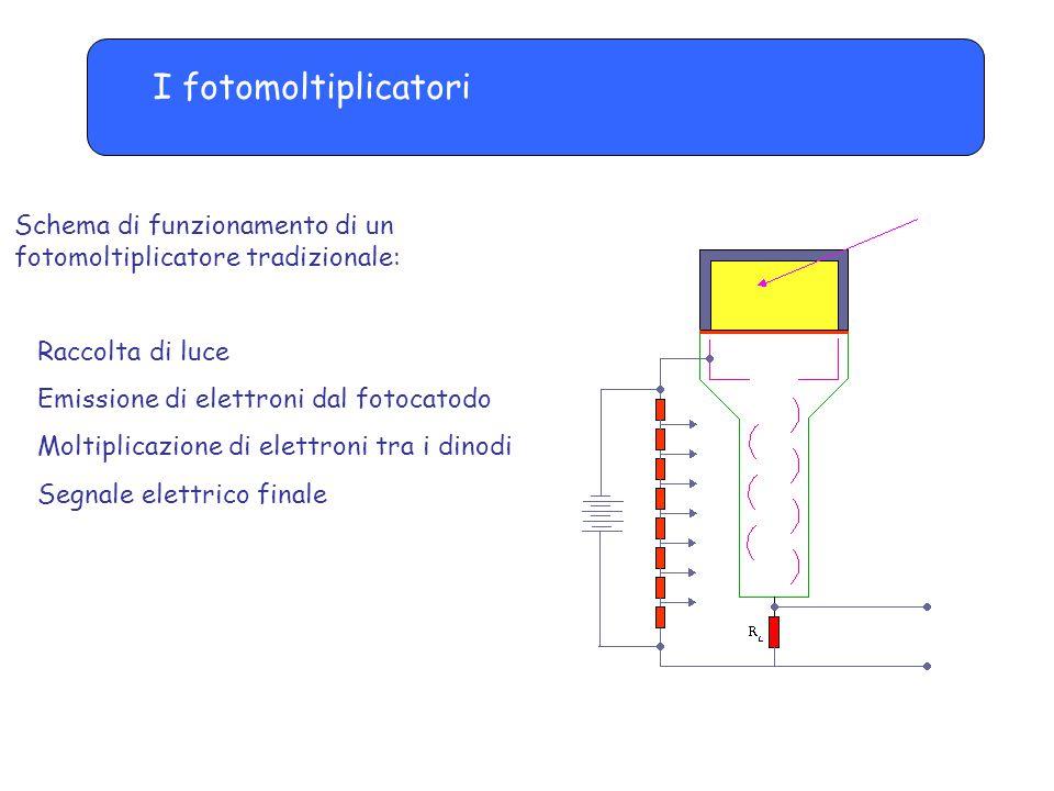 I fotomoltiplicatori: il fotocatodo Fotocatodo: -Produce elettroni per effetto fotoelettrico generato dalla luce incidente -Energia fotoni luce scintillazione: circa 3 eV -Fotocatodo rivestito da materiale semiconduttore, con lavoro estrazione 1.5-2 eV - Emissione spontanea per effetto termico (energia media elettroni a T ambiente = 0.025 eV)