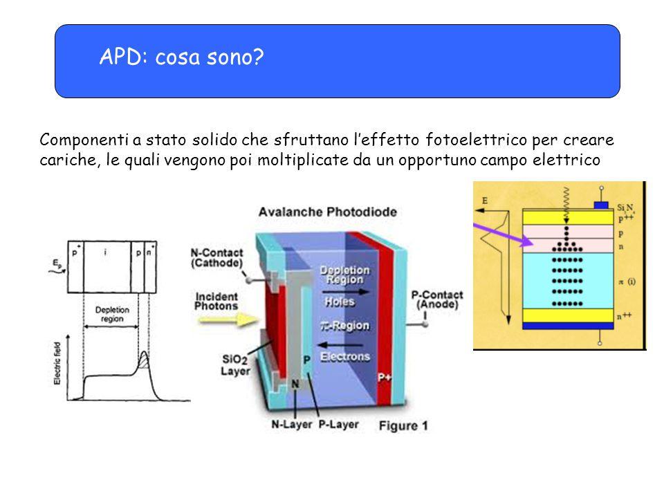 APD: parametri operativi -A causa di uno strato anti-riflesso in superficie, la maggior parte dei fotoni è convertita in segnale, con efficienze dell'ordine dell'80% -La tensione di alimentazione è di alcune centinaia di volt -Guadagni non elevatissimi, dell'ordine di 50-100 -Alta sensibilità alla temperatura, necessitano di correzioni (qualche % per ogni grado di variazione) -Proprietà temporali buone -Particolarmente adatti a convertire la luce proveniente da fibre WLS o da piccoli scintillatori -Dimensioni da 1x1 a 5x5 mm 2 e oltre