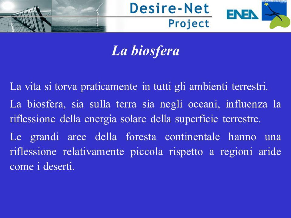 La biosfera La vita si torva praticamente in tutti gli ambienti terrestri. La biosfera, sia sulla terra sia negli oceani, influenza la riflessione del