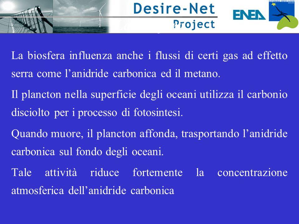 La biosfera La biosfera influenza anche i flussi di certi gas ad effetto serra come l'anidride carbonica ed il metano.