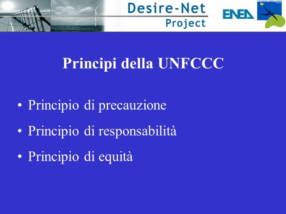 Principi della UNFCCC Principio di precauzione Principio di responsabilità Principio di equità