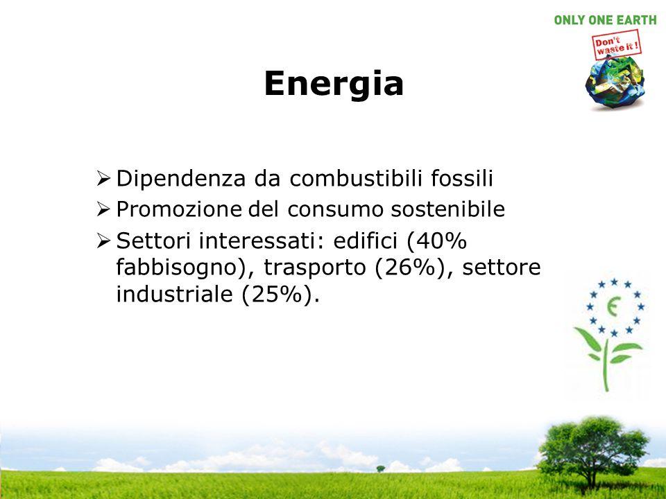 Energia  Dipendenza da combustibili fossili  Promozione del consumo sostenibile  Settori interessati: edifici (40% fabbisogno), trasporto (26%), se