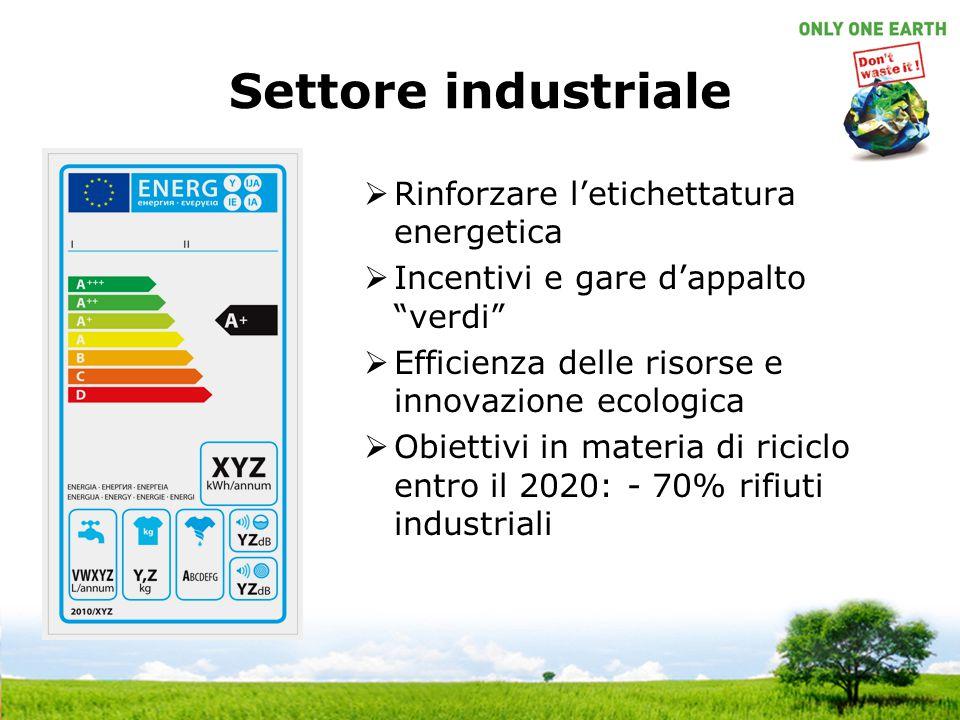 """Settore industriale  Rinforzare l'etichettatura energetica  Incentivi e gare d'appalto """"verdi""""  Efficienza delle risorse e innovazione ecologica """