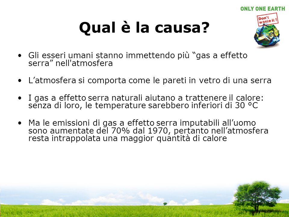 """Qual è la causa? Gli esseri umani stanno immettendo più """"gas a effetto serra"""" nell'atmosfera L'atmosfera si comporta come le pareti in vetro di una se"""